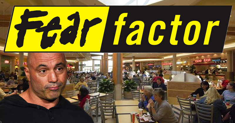 mtv s fear factor to film next season in fayette mall food court